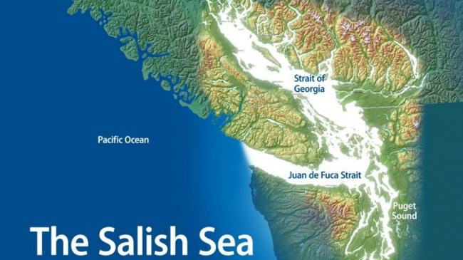 Salish Sea Marine Sanctuary